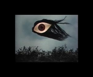 kite of sight