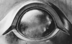 Metal Eye