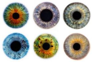 set of eyescapes
