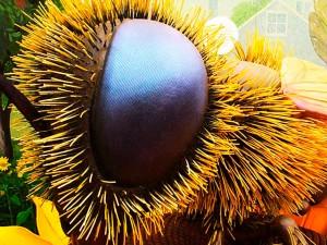 Bug Eye # 5