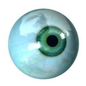 the glass eyeball