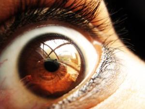 paranoid eye
