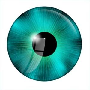 eye tut 4