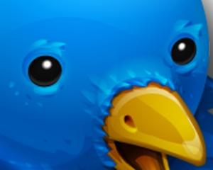 eyes of the Twitterbird