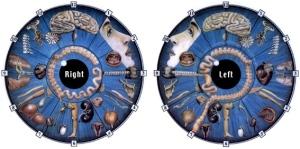 iridology chart #6