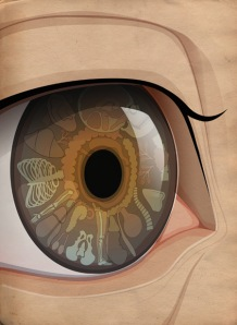 iridology graphic
