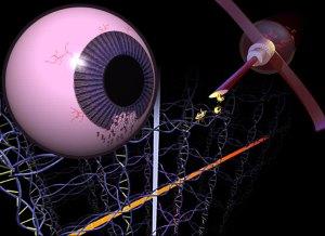 nanotek eye