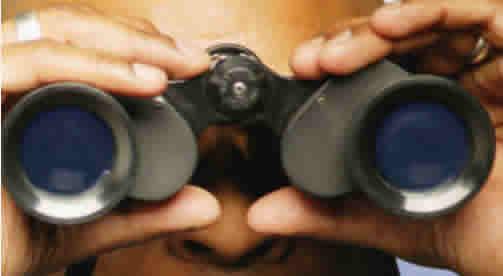 binocular eyes