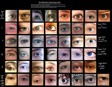 eye colour chart by Delpigeon