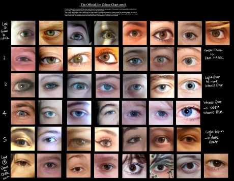 eye colour chart by Delpigeon
