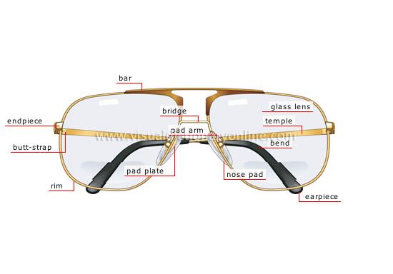 eyeglasses anatomy